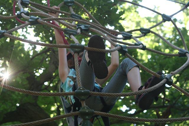 climbing-forest-906973_640