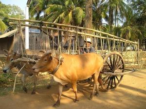 cambodia-445_1280