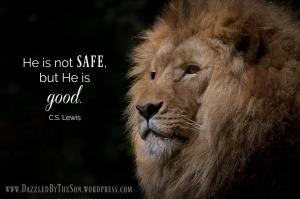 not safe but good