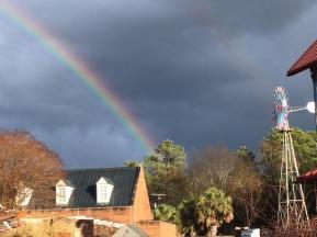 rainbowzoo